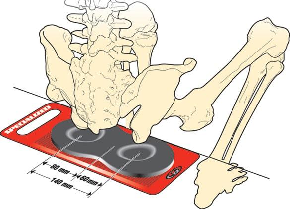 попомер для определения расстояние между сидализными костями