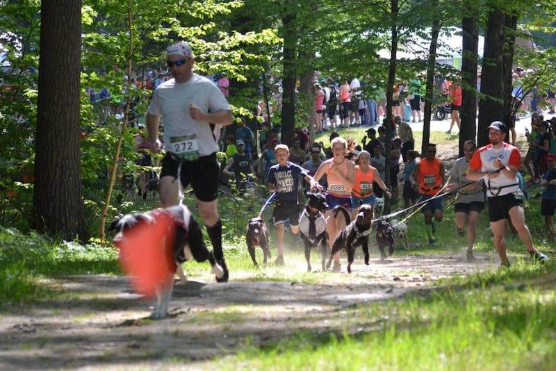 каникросс Pineland Trail Running Festival