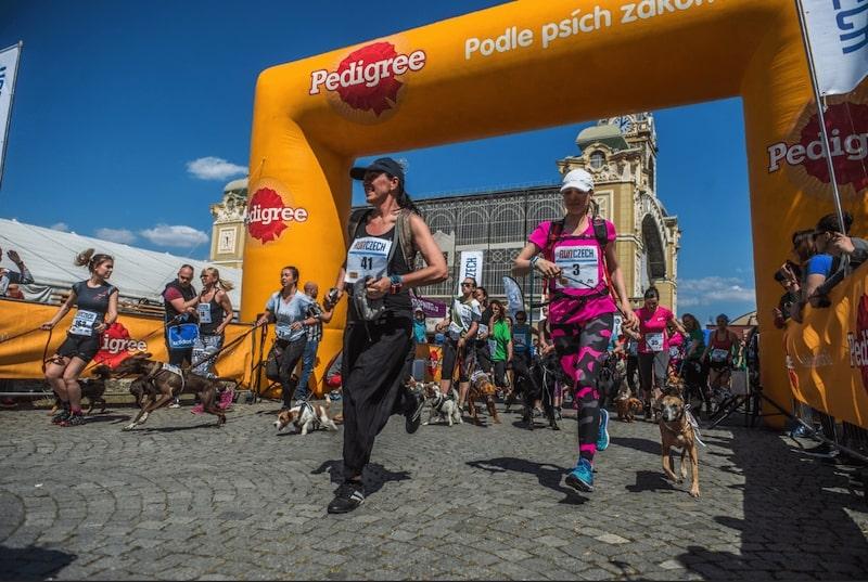 каникросс Volkswagen Prague Marathon