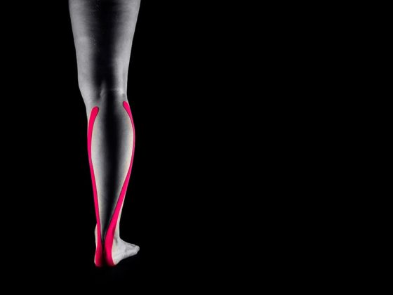 трехглавая мышца голени
